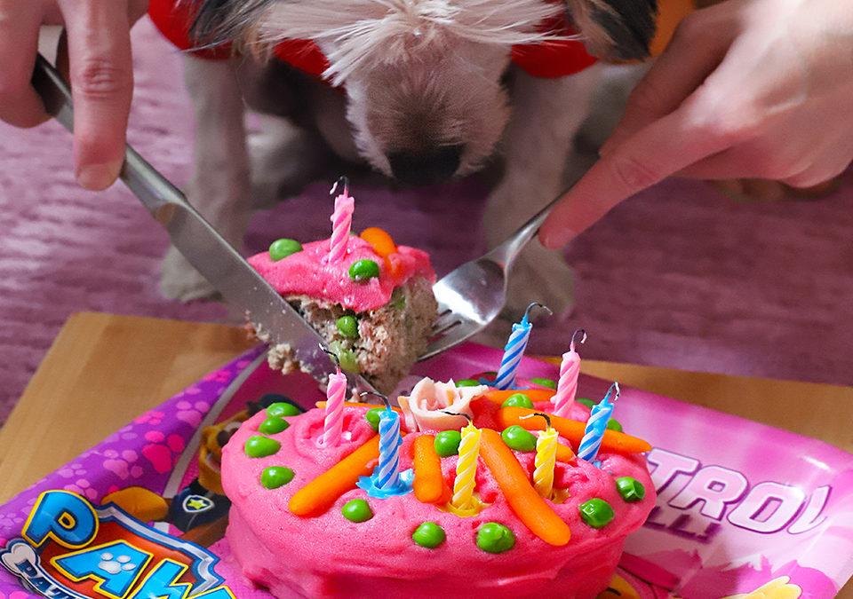 BENBEN'S BIRTHDAY & DOG BIRTHDAY CAKE RECIPE